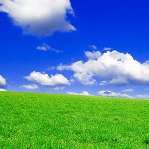蓝天大草原风景头像