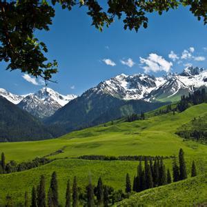 绿色的草原雪山风景头像