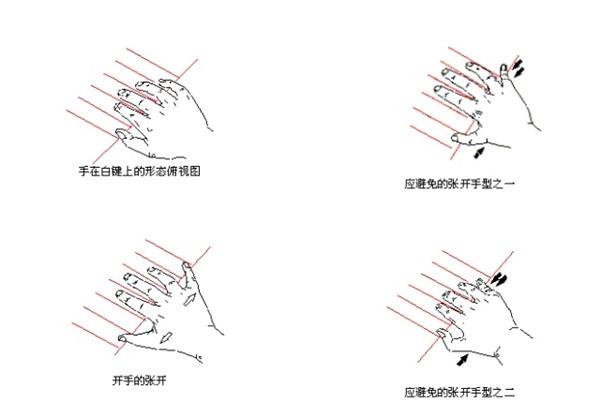 弹钢琴的正确手型图片