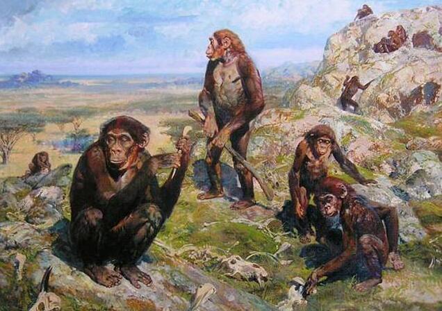 人类的祖先到底是谁 来自哪里?