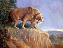 远古时期的动物都那么大,现在为什么却很小?原因竟然是这样