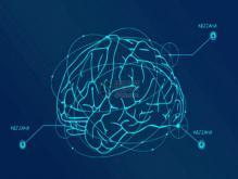 人类大脑开发无极限?实际上人类智慧已经达到顶端了